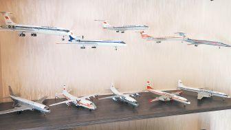 В квартире Благовещенска расположился целый ангар самолетов