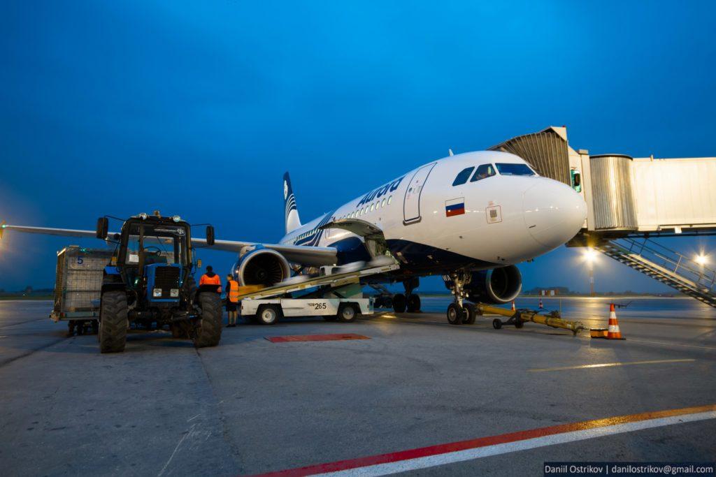 Авиакомпания Аврора отменила запрет на пользование мобильными устройствами при взлете и посадке самолета