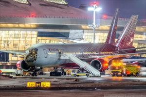 В авиапарке авиакомпании Россия появился дальневосточный леопард
